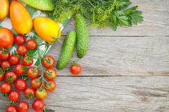 Fresh ripe vegetables Royalty Free Stock Photo
