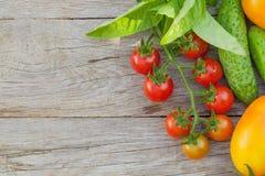 Fresh ripe vegetables Stock Photos