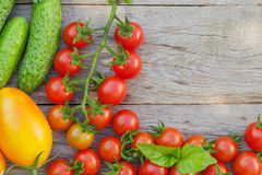 Fresh ripe vegetables. And herbs on garden table. Top view with copy space Royalty Free Stock Image