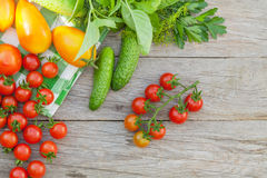 Fresh ripe vegetables. And herbs on garden table. Top view with copy space Royalty Free Stock Photography