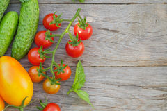 Fresh ripe vegetables. And herbs on garden table. Top view with copy space Stock Images