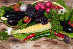 Fresh ripe vegetables Royalty Free Stock Photos