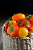 Fresh ripe vegetables tomatoes Royalty Free Stock Image