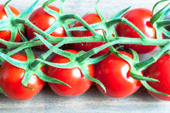 Fresh ripe vine tomatoes with a shallow depth of field on a wood Royalty Free Stock Photo