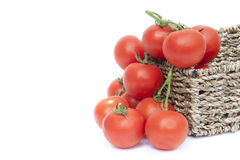 Fresh ripe vine tomatoes vegetables Royalty Free Stock Images