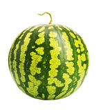 Fresh ripe watermelon Royalty Free Stock Photography