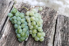 Fresh ripe white bunch of  grapes over old table for vine Royalty Free Stock Image