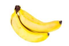 Fresh riped bananas Royalty Free Stock Photography