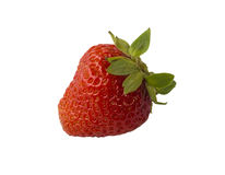 Fresh ripen single strawberry on isolated white background. With green leaves Stock Image