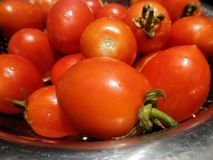 Fresh ripen tomato for salad Royalty Free Stock Images