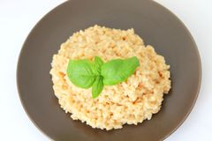 Fresh Risotto rice with cheese Royalty Free Stock Images