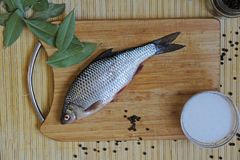 Fresh river fish roach with spices salt, pepper, bay leaf on a cutting wooden board. Russia stock images