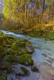 Fresh river form mountains in long exposure Royalty Free Stock Photos