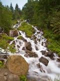 Fresh River Stream Stock Image