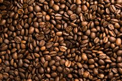 Fresh roasted arabica coffee beans background. Beautiful arabica coffee beans has very strong smell and excellent taste!Every coffee bean is unique Stock Images