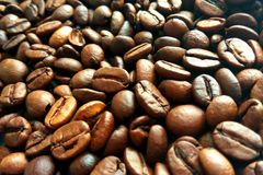 Fresh roasted brown coffee beans texture background royalty free stock photography