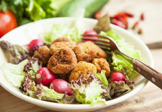 Fresh Roasted Chicken Meat Balls with Lettuce and Radish in Bowl Stock Photography