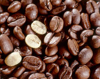 Fresh roasted coffee beans Royalty Free Stock Image
