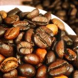 Fresh Roasted Coffee Beans Stock Image