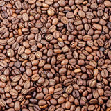 Fresh roasted coffee beans. As background stock photos