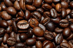 Fresh roasted coffee beans background. Texture. Arabica bean wallpaper, close-up Royalty Free Stock Photography