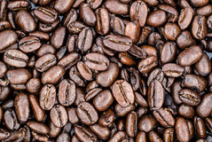 Fresh Roasted Coffee Beans Royalty Free Stock Photos