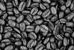 Fresh Roasted Coffee Beans - Black and White Stock Images