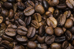 Fresh Roasted Coffee Beans Stock Photography