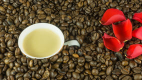 Fresh roasted coffee beans with a cup of coffee Royalty Free Stock Images