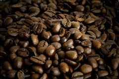 Fresh roasted coffee beans dark brown background close up macro with selective focus and shallow depth of field.  royalty free stock photos