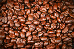 Fresh Roasted Coffee Beans, Espresso, Java. W/ rich color and aroma for brewing Stock Photos