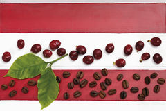 Fresh roasted coffee beans with leaves Royalty Free Stock Photography