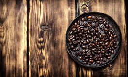 Fresh roasted coffee in the pan. Stock Photography