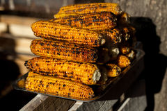 Fresh roasted or grilled corncobs. Grilled Corn for sale on the street Stock Photography