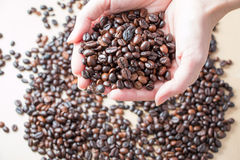 Fresh roasted organic Coffee beans in a woman hands Royalty Free Stock Photos