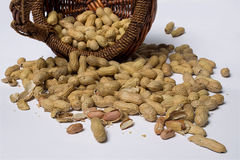 Fresh Roasted Peanuts Royalty Free Stock Images