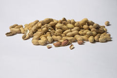 Fresh Roasted Peanuts Stock Photos
