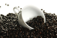 Fresh roasted whole coffee beans Royalty Free Stock Images