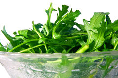 Fresh rocket Stock Images