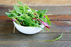 Fresh rocket salad salad with radicchio. Food closeup Stock Photo