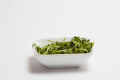 Fresh rocket vegetable Stock Image