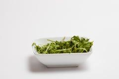 Fresh rocket vegetable Stock Image