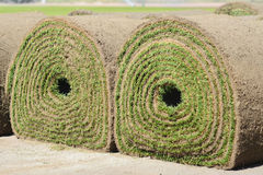 Fresh rolled-up grass turf Royalty Free Stock Photos
