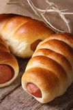Fresh rolls with sausage closeup unpacked paper vertical Royalty Free Stock Photos