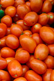 Fresh Roma Tomatoes Royalty Free Stock Image