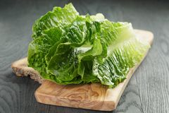 Fresh romain green salad leaves on olive board Royalty Free Stock Photography