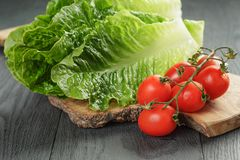 Fresh romain green salad and tomatoes on olive Royalty Free Stock Photos