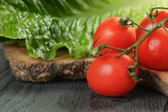 Fresh romain green salad and tomatoes on olive Royalty Free Stock Image