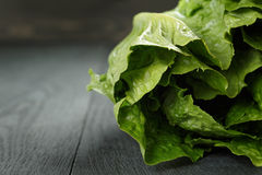 Fresh romain green salad on wood table Royalty Free Stock Photos