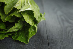 Fresh romain green salad on wood table Royalty Free Stock Images